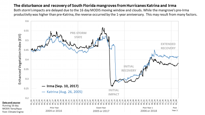 Recovery after Hurricane Katrina and Irma