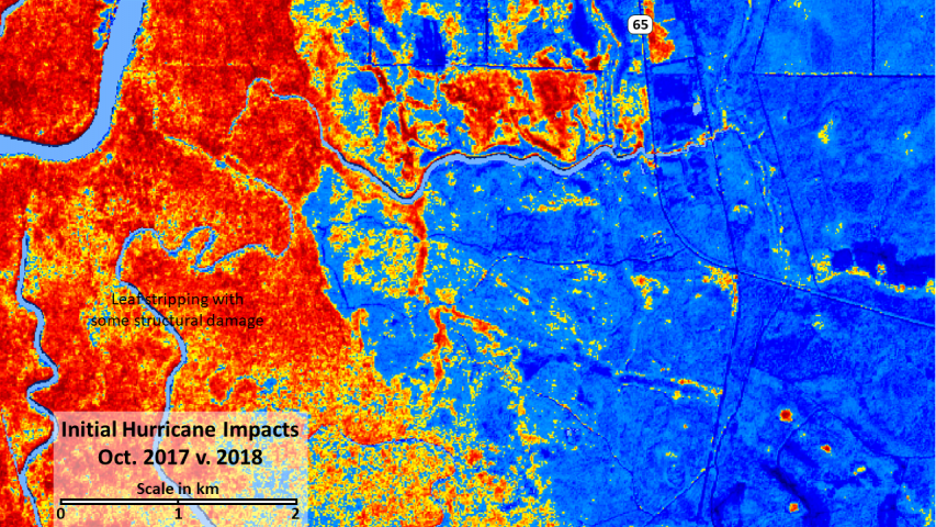 Post-Michael decline in NDVI in Fall 2018.