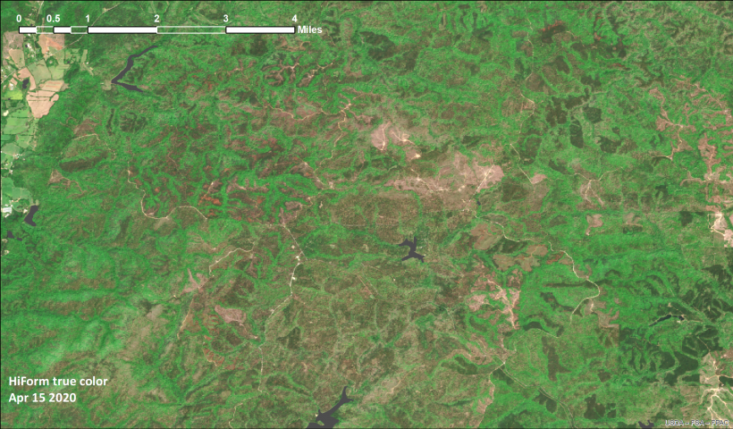 Talladega National Forest Apr 15 2020 true color from Sentinel 2