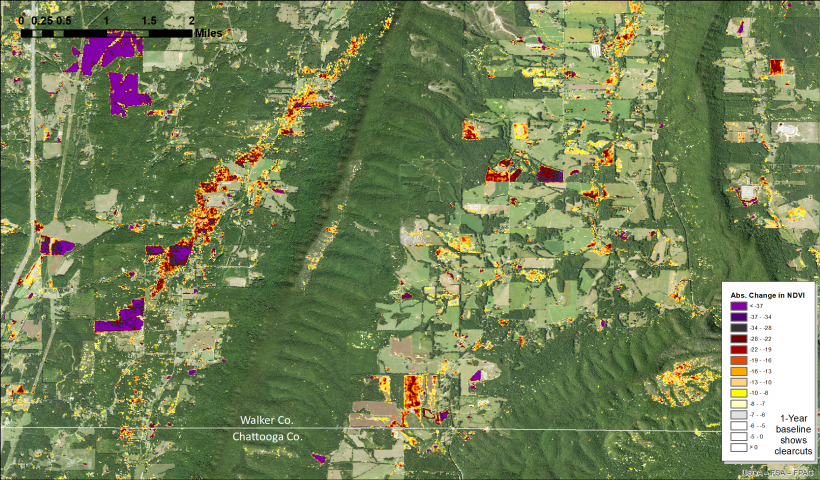 HiForm NDVI change map for Chattooga-Walker Counties (1 year baseline)