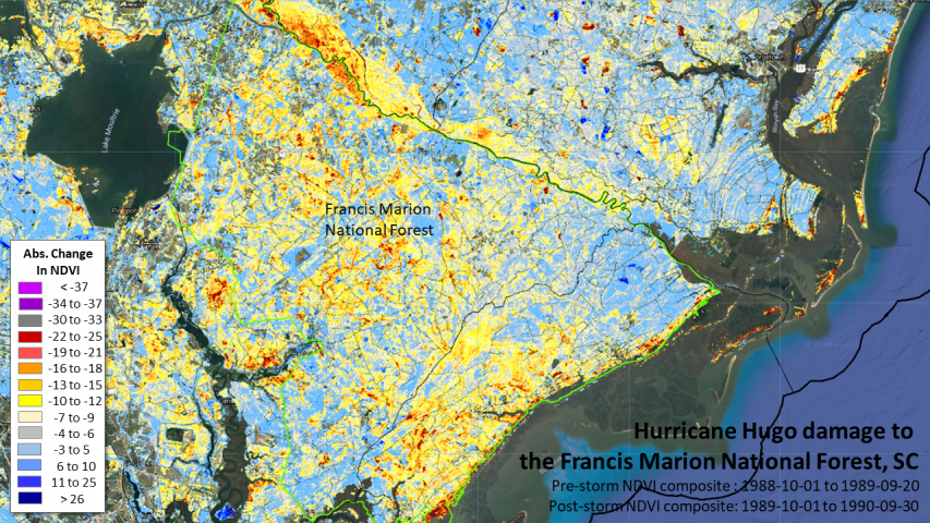 Hurricane Hugo damage to the Francis Marion National Forest 1989-1990